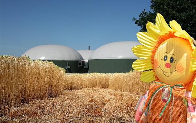 Biogas im Glas