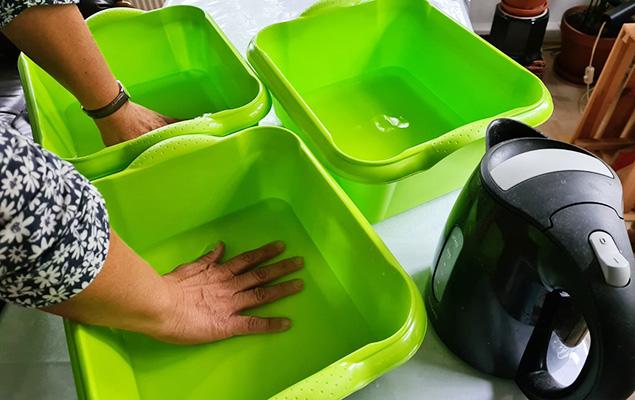 3 grüne Schüsseln mit Wasser und Hände