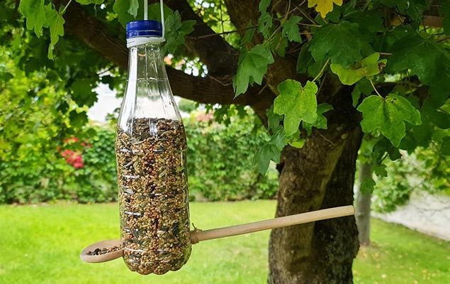Vogelfutterhaus in der Flasche